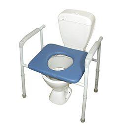 Toilet Frame